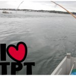 Do You TpT? Tips & Tricks From the Pros